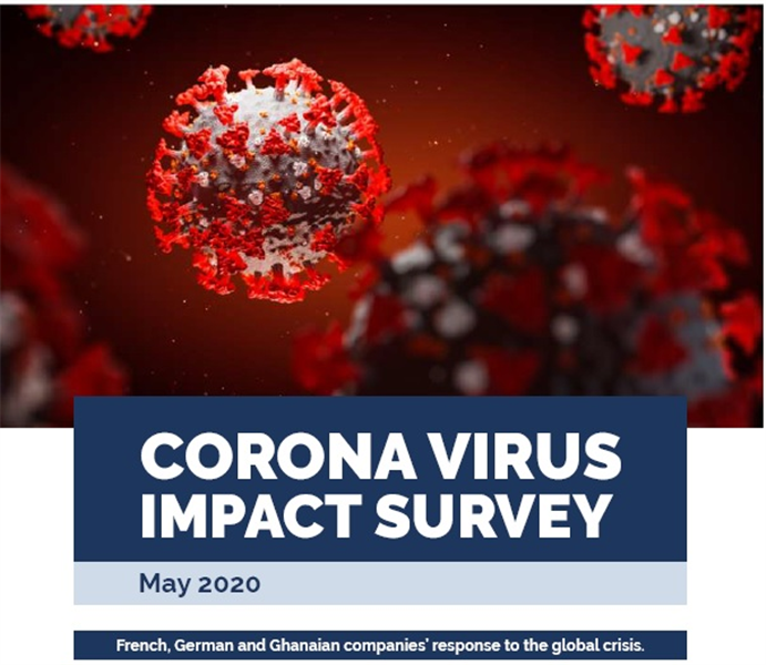 Corona Virus Impact Survey: French, German And Ghanaian Companies' Response To The Global Crisis.