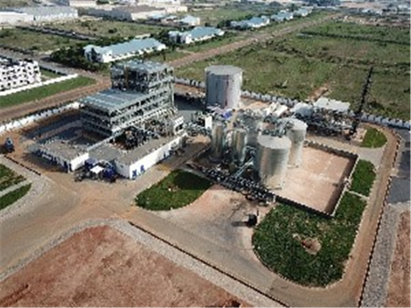 Africa's Largest Shea Butter Plant Begins Operation In Tema
