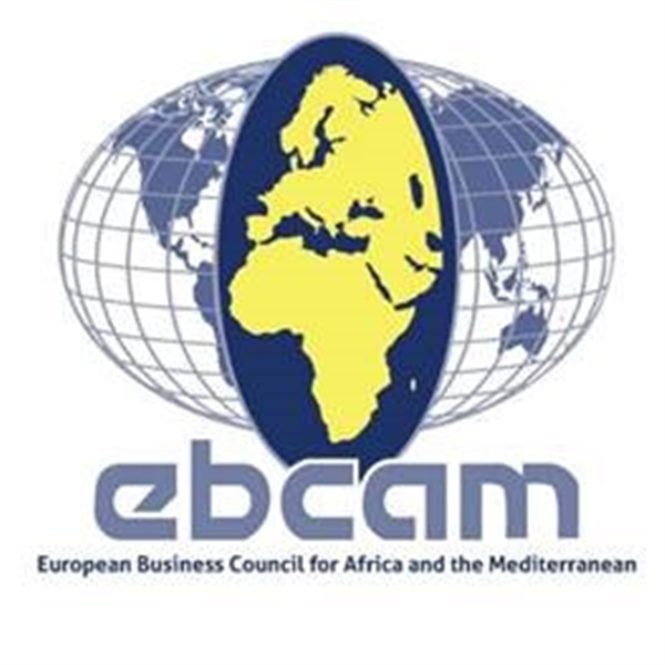 The Future of EU-Africa Relations, A Private Sector Perspective - Declaration of the European Business Council for Africa